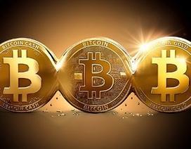 """Sau 30/1 sẽ có """"lằn ranh pháp luật"""" quản lý các loại tiền ảo như Bitcoin!?"""