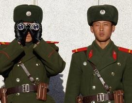 Bị kiểm soát chặt chẽ, số người đào tẩu Triều Tiên giảm kỷ lục