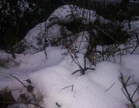 Sáng nay 2 lần mưa tuyết nhẹ trên đỉnh Fansipan