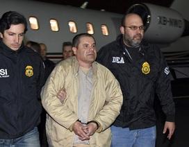 Cuộc trốn chạy trong tình trạng khỏa thân của trùm ma túy El Chapo