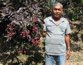 Lão nông từ chối khách Trung Quốc: Đặc sản độc đáo phải để dân Việt ăn Tết