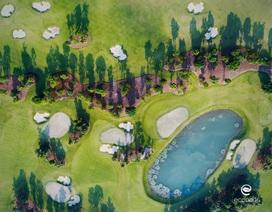 Nhà đầu tư săn tìm bất động sản gần sân golf
