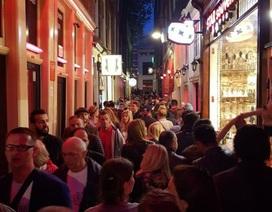 """""""Kẻ thù"""" mới của phố đèn đỏ Amsterdam"""