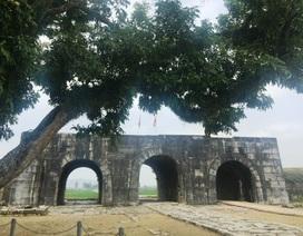 """Phát hiện nhiều di vật tại công trình kiến trúc """"độc nhất vô nhị"""" ở Việt Nam"""