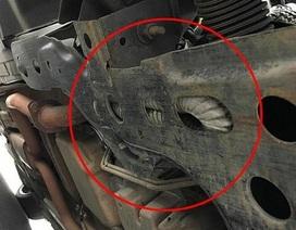 Kinh hãi phát hiện rắn kịch độc ẩn náu bên dưới xe để tránh nóng