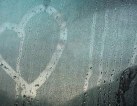 Sang năm mới, 3 điều sau bạn cần làm để có thể tìm thấy tình yêu