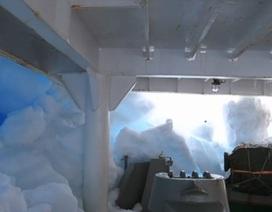 Tàu khảo sát Trung Quốc đâm phải băng Nam Cực