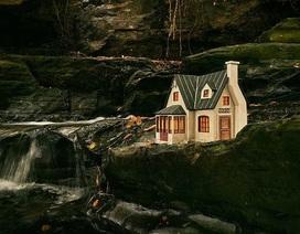 """Đang đi dạo và bạn bắt gặp những """"ngôi nhà thần tiên"""" nhỏ xíu bên đường..."""