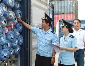 Khẩn trương giám định hàng nghìn container phế liệu ùn ứ tại cảng biển