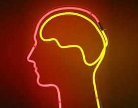 Ứng dụng đặc biệt giúp cải thiện sự tập trung của con người