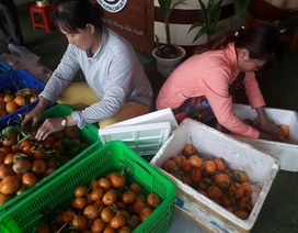 Chủ nhà ăn trái cây trước khách mới dám ăn sau