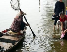 """""""Nghịch cảnh"""" người thả cá, người chờ sẵn... chích điện vợt cá!"""