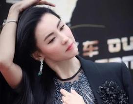 """Hé lộ giấy khai sinh của con trai Trương Bá Chi, rộ tin người đẹp là """"vợ lẽ"""""""
