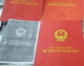 Phó Thủ tướng biểu dương Báo Dân trí với 25 kỳ báo điều tra, chống tiêu cực