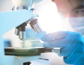 Tìm ra cách chữa các bệnh ung thư chỉ trong… một năm?