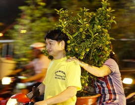 Chợ hoa bến Bình Đông: Chi trăm triệu rinh hoa về chơi tết