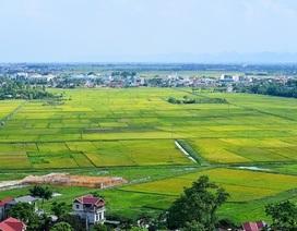 Kinh tế đất đai: Những bất cập trong giá đất và hệ lụy