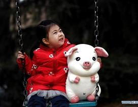 Người châu Á khắp thế giới tưng bừng đón năm Kỷ Hợi