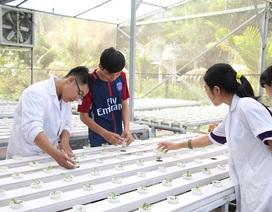 Sinh viên được hỗ trợ để khởi nghiệp: Yêu cầu gắn kết giữa học và hành