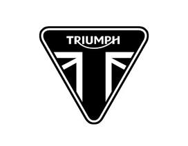 Bảng giá Triumph tại Việt Nam cập nhật tháng 2/2019