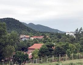 """Chủ tịch Hà Nội: Chuyển cơ quan điều tra làm rõ việc cố ý """"xẻ thịt"""" rừng Sóc Sơn"""