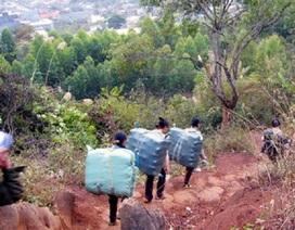 Biên phòng Lạng Sơn xin 3 tỷ đồng làm hàng rào thép gai ngăn buôn lậu