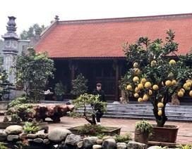 Biệt phủ gỗ 3D chục tỷ đồng: Nhà hoài cổ nét lạ của đại gia Việt