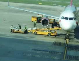 Kỷ luật 2 nhân viên ném hành lý của khách ở sân bay Đà Nẵng