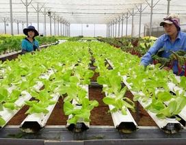 Tư vấn tuyển sinh 2019: Ngành Công nghệ Nông nghiệp làm việc như thế nào?