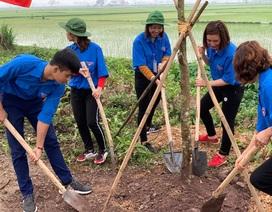 Thanh niên Thủ đô phát động Tết trồng cây và khởi động Tháng thanh niên năm 2019
