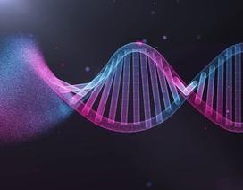 Bệnh nhân bị thiếu gien CCR5 sẽ phục hồi chấn thương não nhanh hơn người khác