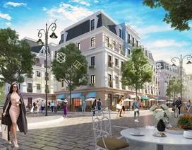 Sức hút lớn của phân khúc nhà phố thương mại ngay đầu năm Kỷ Hợi