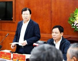 Phó Thủ tướng Trịnh Đình Dũng: Dịch tả lợn châu Phi phức tạp, cần quyết liệt phòng chống