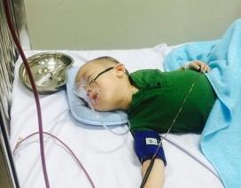 Nhói lòng bé trai 3 tuổi từng ngày héo mòn vì căn bệnh ung thư quái ác