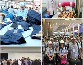 Giả tị nạn để xin việc làm, công nhân ngừng việc vì giảm phụ cấp