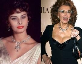 Sophia Loren bất ngờ tái xuất