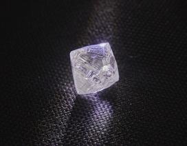 """Tìm thấy viên kim cương """"khủng"""" nặng 100 carat tại Nga"""
