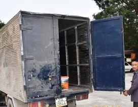 Lái xe đi dọc quốc lộ trộm đồ của xe tải dừng nghỉ bên đường