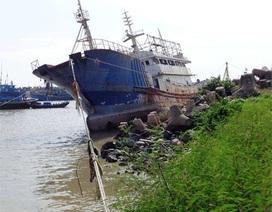 """Bán đấu giá """"tàu ma"""" được tìm thấy trên vùng biển Bình Thuận"""