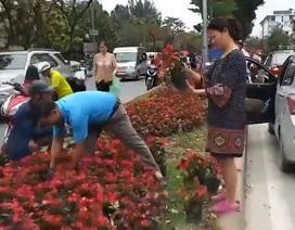 """Người dân tranh nhau """"hôi hoa"""": Giành cái đẹp bằng hành động xấu xí?"""
