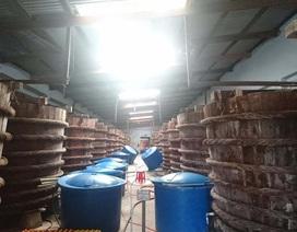 Hoàn thiện hồ sơ Dự thảo Tiêu chuẩn Việt Nam quy phạm thực hành sản xuất nước mắm