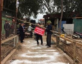 Hà Nội phát hiện thêm ổ dịch tả lợn châu Phi ở Sóc Sơn