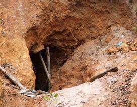 Nhiều đối tượng đào hàng loạt hang sâu bí ẩn trên đất trồng keo của dân tại Bình Định!