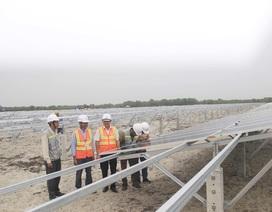 """Dự án điện mặt trời ngàn tỷ, kỳ vọng """"biến cát trắng… đẻ ra tiền"""""""