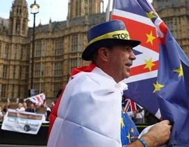 Thoả thuận Brexit lại bị bác bỏ: Nước Anh muốn đi về đâu?