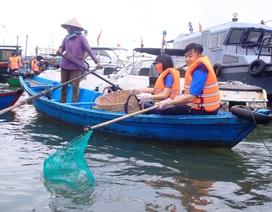 """Bình Định: Thanh niên chèo thuyền, vớt rác quanh khu """"ổ chuột"""""""