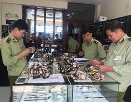 Chấn động: Hơn 3.000 chiếc đồng hồ nhái thương hiệu Rolex, Patek Philippe...bị tịch thu