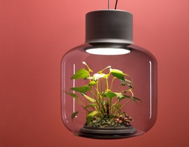 Những phát minh tuyệt vời thân thiện với môi trường... và cả con người!