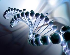 """Hack DNA có thể giúp con người """"bất tử"""""""