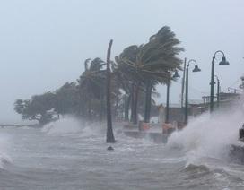 Sẽ có khoảng 5 cơn bão ảnh hưởng trực tiếp đến đất liền năm 2019